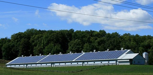 panneaux solaires sur abri monopente